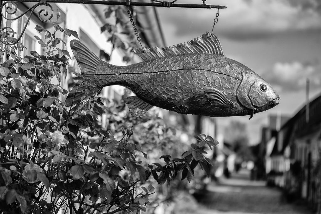 Holmer Fischerzunft © Holger Rüdel | Der Karpfen ist das Symbol der Holmer Fischerzunft und schmückt in geschnitzter Form auch das Haus von Jörg Nadler in der Süderholmstraße.