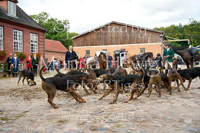 Jagd Knoop 216904_Marina Hewig