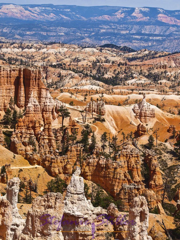 Märchenwelt | Blick in den Bryce Canyon