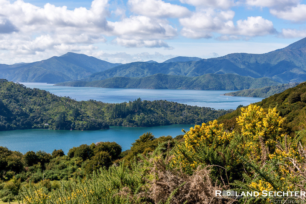 Queen Charlotte Track 3