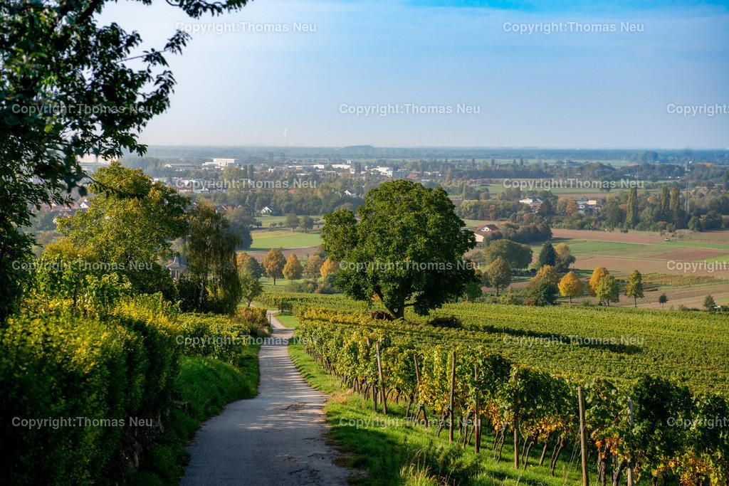 Herbst_Heppenheim | ,, Bild: Thomas Neu