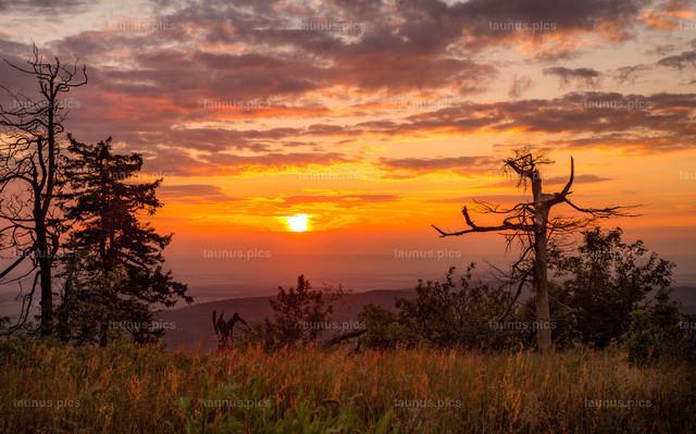 Sonnenuntergang am Großen Feldberg   Sonnenuntergang am Gipfel des Großen Feldbergs