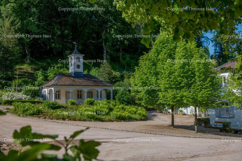 _DSC5580 | Bensheim,Auerbach, staatspark Fuerstenlager, ,, Bild: Thomas Neu