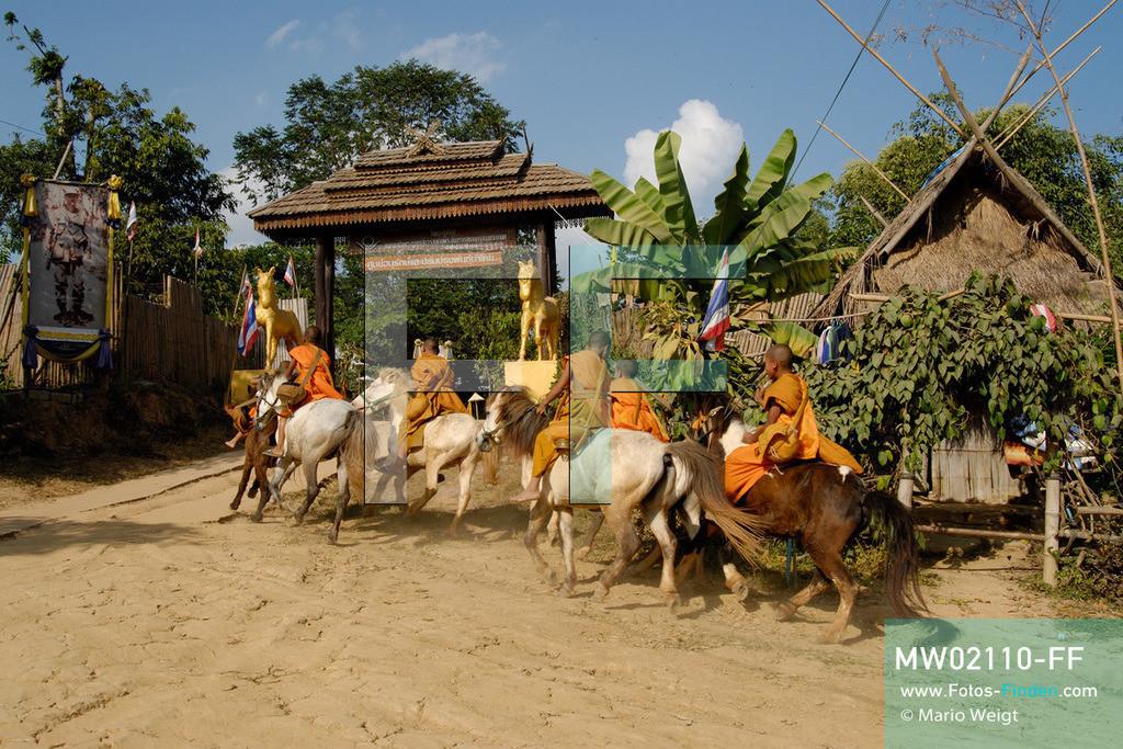 MW02110-FF | Thailand | Goldenes Dreieck | Reportage: Buddhas Ranch im Dschungel | Junge Mönche kommen vom Almosen sammeln.  ** Feindaten bitte anfragen bei Mario Weigt Photography, info@asia-stories.com **