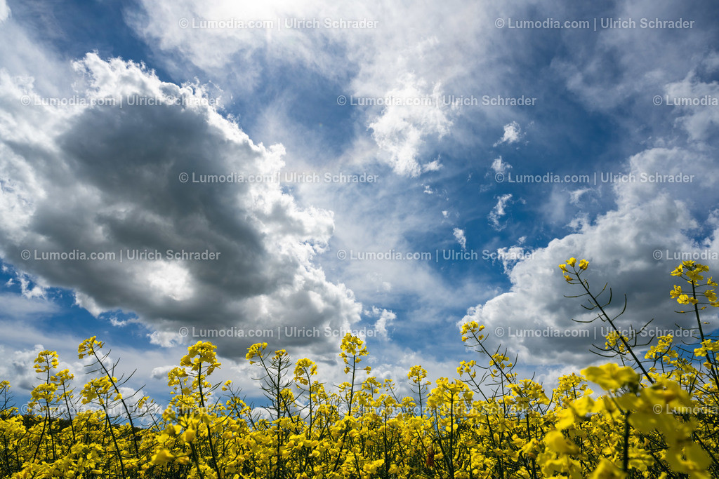 10049-12260 - Wolkenspiel