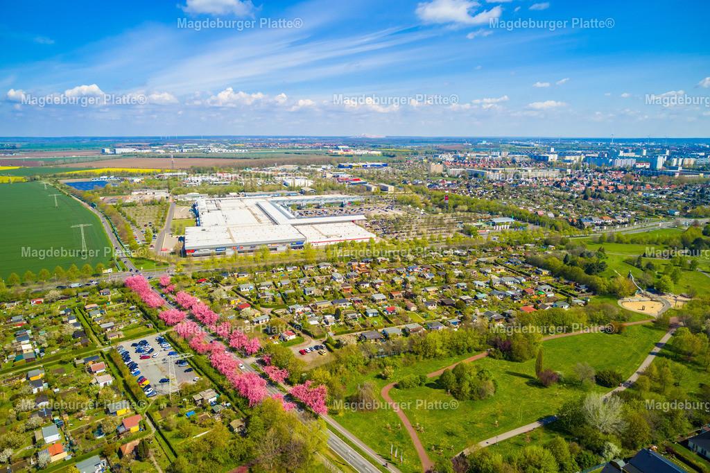 Holzweg-0008 | Luftbild aus der Vogelperspektive von MAGDEBURG mit Drohne oder aus dem Flieger fotografiert.