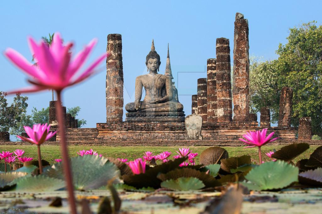 MW1212-4366 | Thailand: Buddha-Statue am Seerosenteich in Alt-Sukhothai