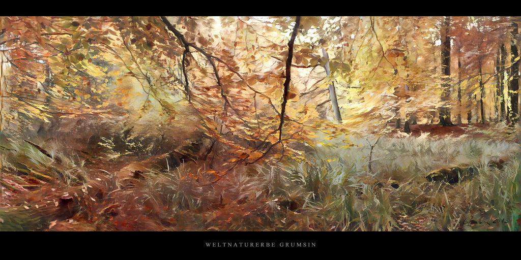 Gemälde Weltnaturerbe Grumsin | Gemälde vom Buchenwald im Weltnaturerbe Grumsin