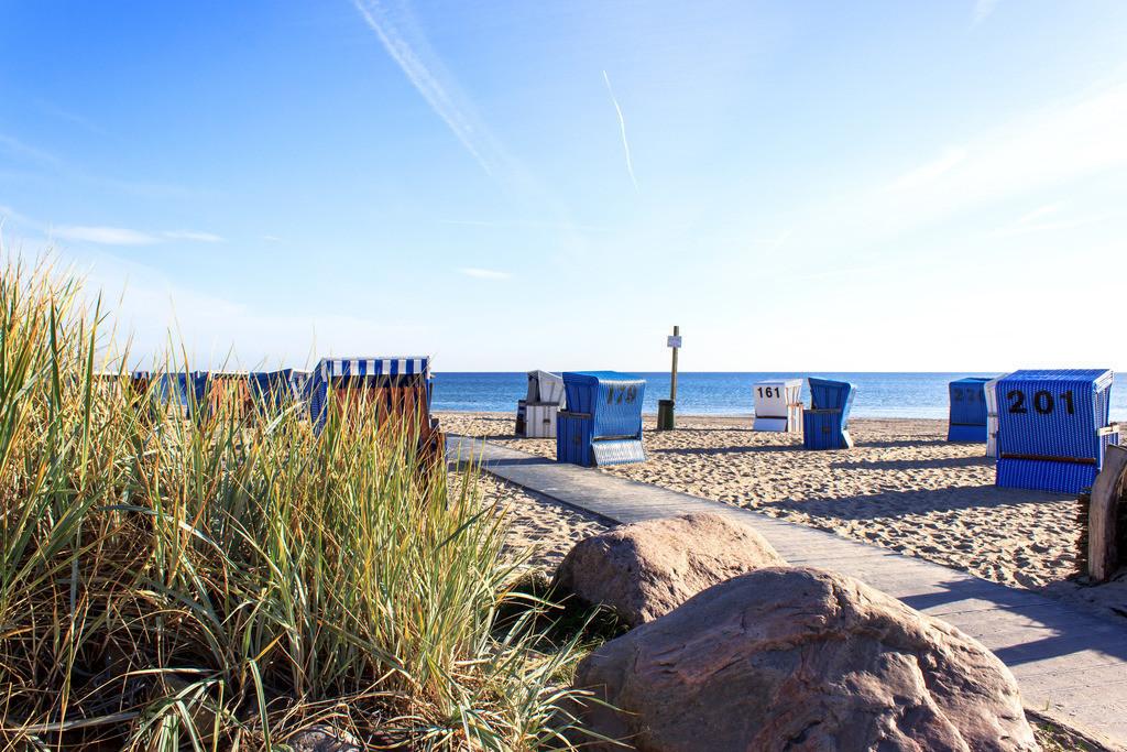 Strandkörbe an der Ostsee   Strandkörbe und Strandgras am Strand in Damp