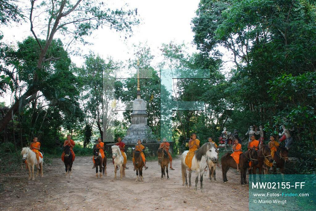 MW02155-FF | Thailand | Goldenes Dreieck | Reportage: Buddhas Ranch im Dschungel | Abt Phra Khru Bah Nuachai Kosito beendet das Training von Muay Thai (Thaiboxen) mit einem Gebet.  ** Feindaten bitte anfragen bei Mario Weigt Photography, info@asia-stories.com **