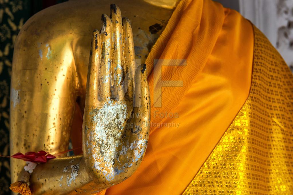MW0119-8580 | Buddhas Hand