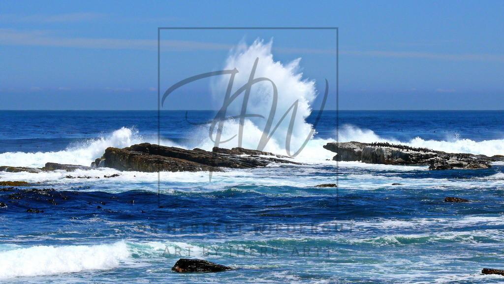 Insel mit Kormoranen | Das Motiv zeigt den Atlantik in der Nähe des Kap der Guten Hoffnung in Südafrika.