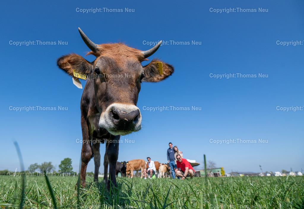 DSC_9975 | Bensheim, Schwanheim, FamilieSchweikert in Schwanheim nach 50 Jahren Viehhaltung jetzt mit ihren Rindern auf die Weiden, ,, Bild: Thomas Neu