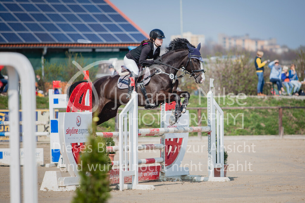 190406_Frühlingsfest_SprA-106 | Frühlingsfest der Pferde 2019, von Lützow Herford, A**-Springen, RLP 10 - 32