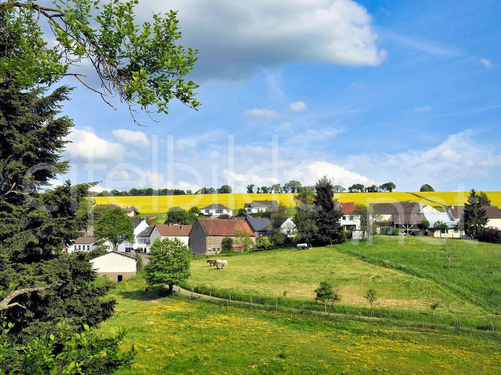 Tettscheid | idyllisches Eifeldorf bei Üdersdorf in der Eifel (Vulkaneifel)