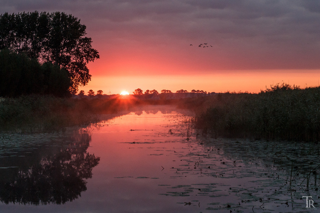 Sonnenaufgang im Westhavelland