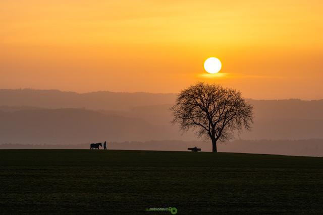 Goldene Stunde   Der Tag neigt sich mit der goldenen Stunde langsam zu Ende