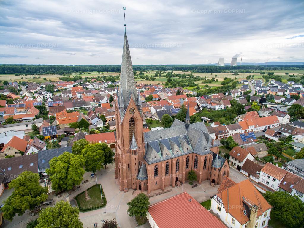 Nr. 1 Dom Rheinsheim
