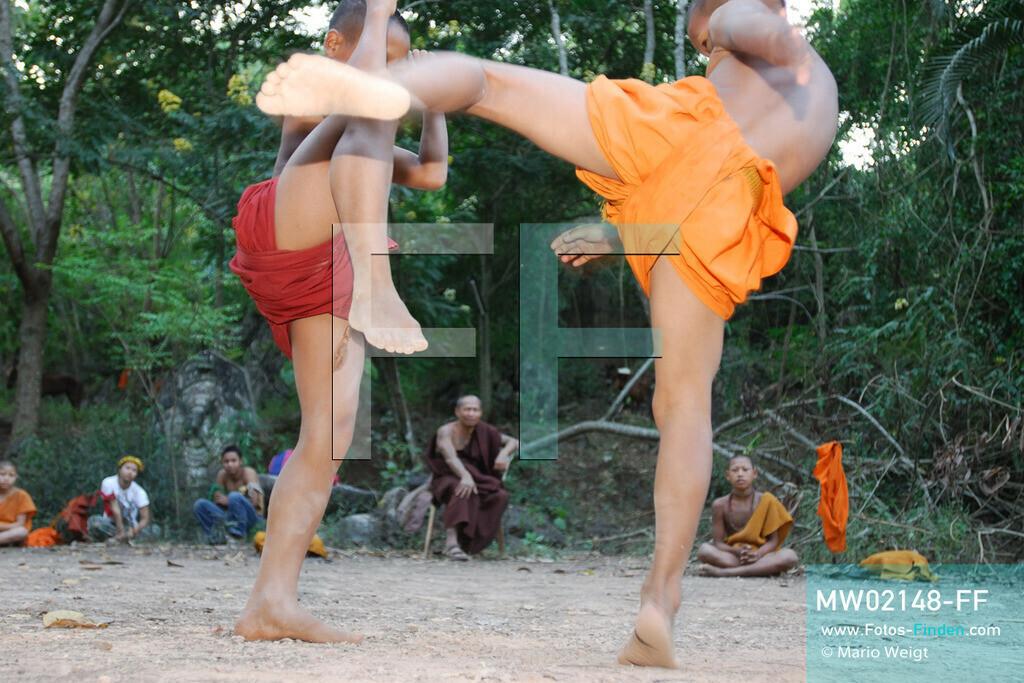 MW02148-FF   Thailand   Goldenes Dreieck   Reportage: Buddhas Ranch im Dschungel   Die jungen Mönche lernen Muay Thai (Thaiboxen)  ** Feindaten bitte anfragen bei Mario Weigt Photography, info@asia-stories.com **