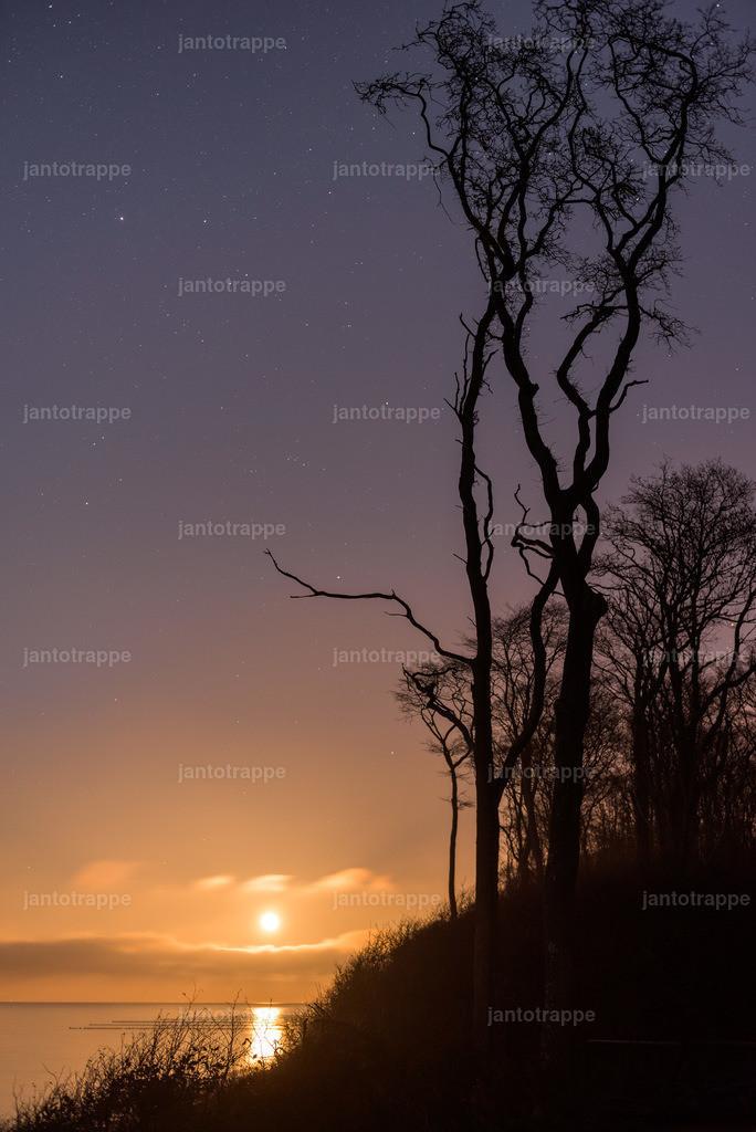 Gespenster Wald Nienhagen bei Vollmond