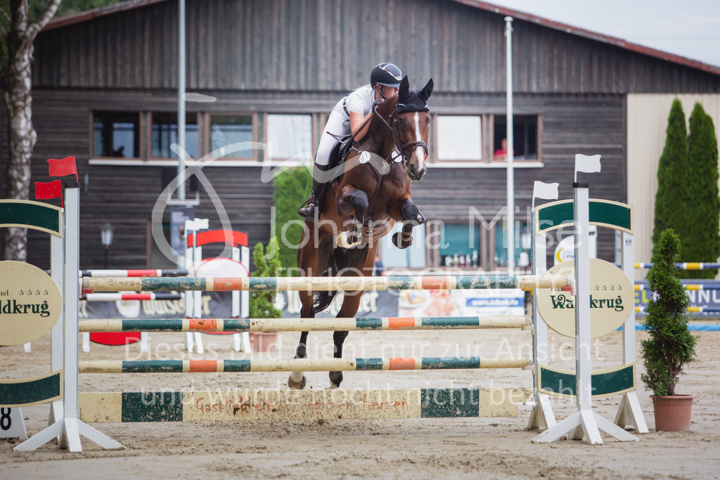 200821_Delbrück_Youngster-M-623 | Delbrück Masters 2020 Springprüfung Kl. M* Youngster Springen 6-8jährige Pferde