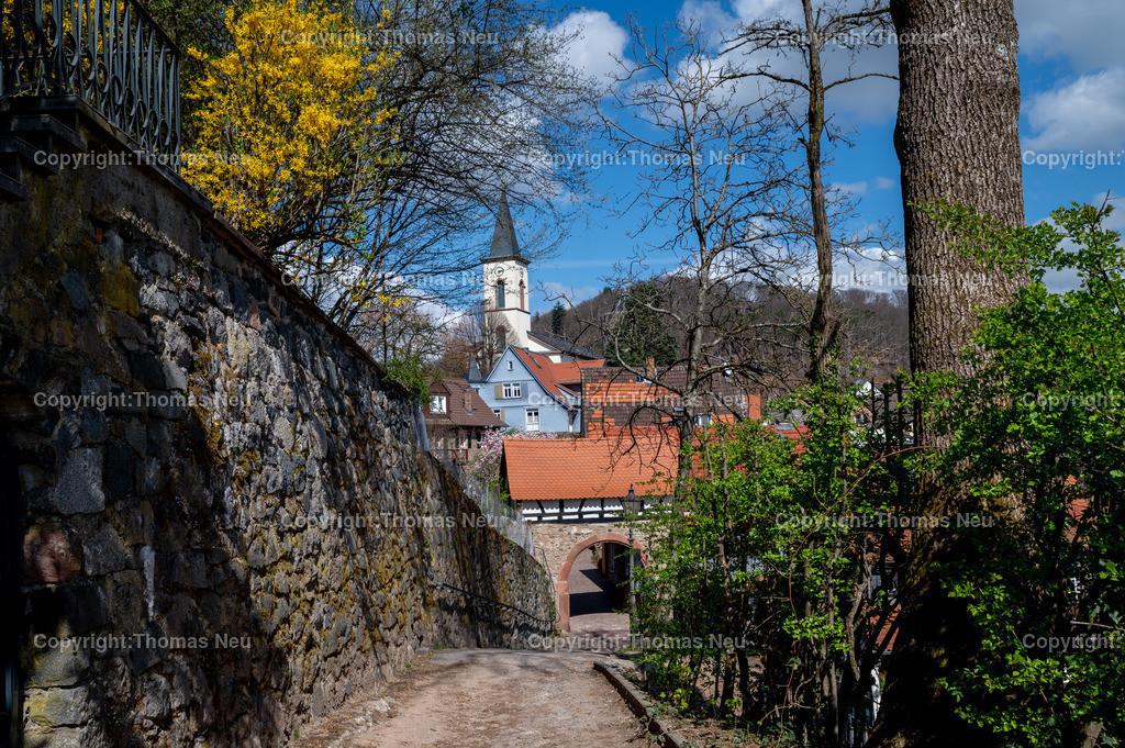 DSC_3204 | Lindenfels, Frühlingslaune in der Burgstadt, überall blüht es auf hier Blick auf das Fürther Tor, , Bild: Thomas Neu