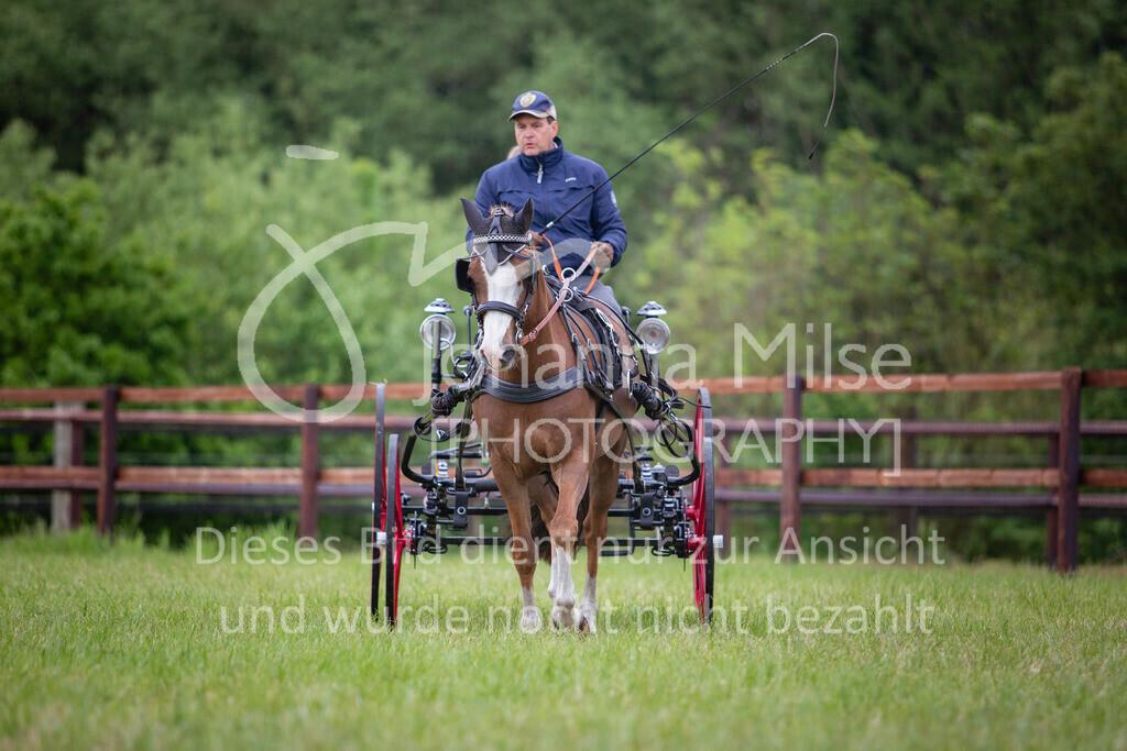 190525_Fahren-009 | Pferdesporttage Herford 2019 Fahren