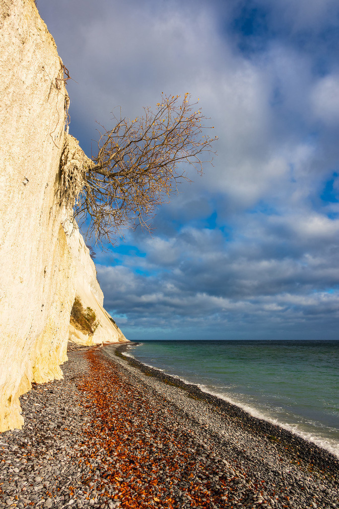 Ostseeküste auf der Insel Moen in Dänemark   Ostseeküste auf der Insel Moen in Dänemark.