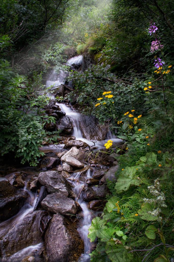 Wasserliebe | Sölkpass