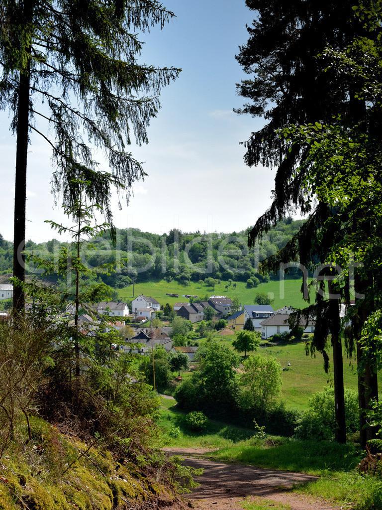 Blick aus dem Wald auf Trittscheid (Vulkaneifel) | Trittscheid, Gemeinde Üdersdorf in der Eifel
