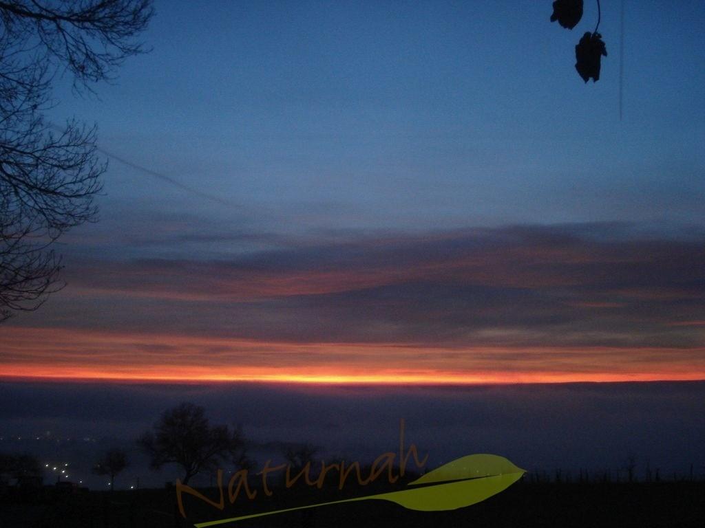 Die blaue Stunde | Ein neuer Tag wird geboren. Jedem Anfang wohnt ein Zauber inne, wie Herrmann Hesse beschreibt im Gedicht