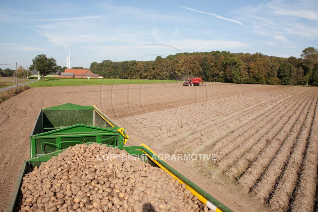 20110929-IMG_5972 | Ernte auf einem Kartoffelfeld - AGRARBILDER