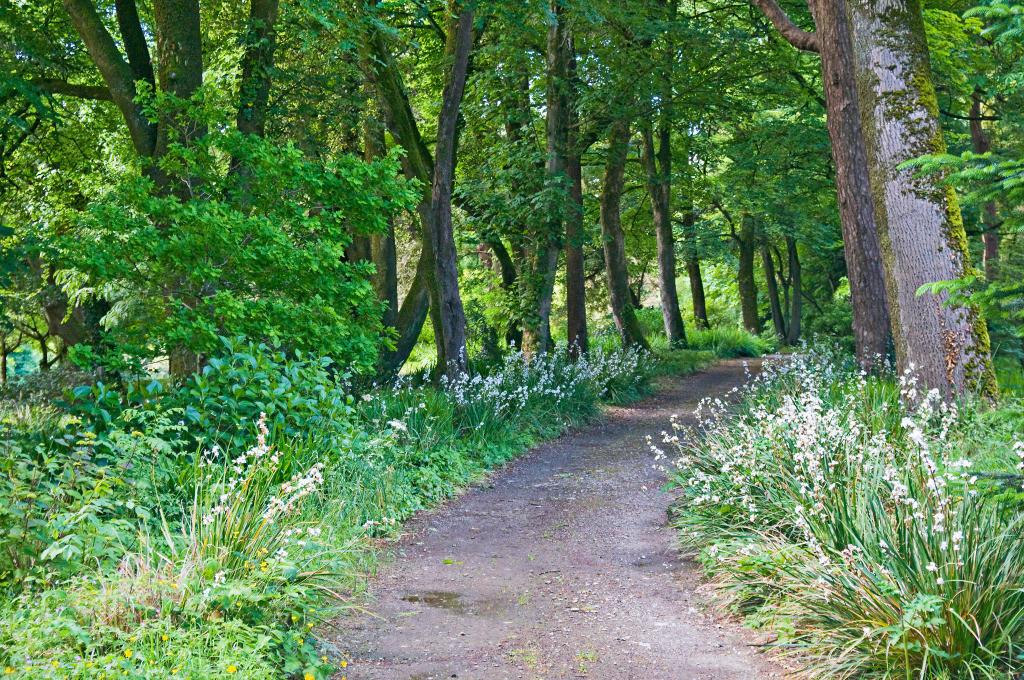 Best. Nr. lebensweg04   Gartenpfad, Lisselan Gardens, Co. Cork, Irland
