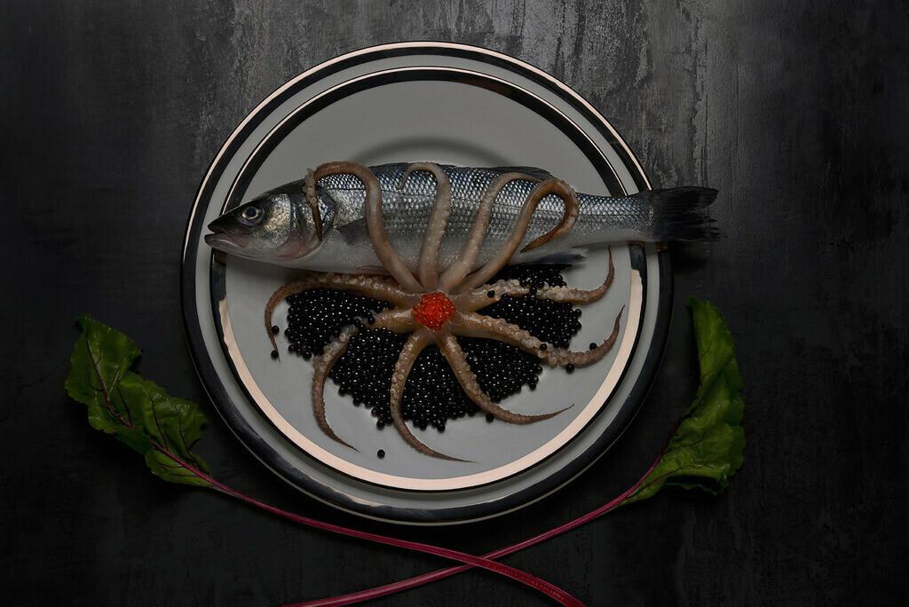 Wolfsbarsch mit Octopus | Foodfoto, Wolfsbarsch mit Octopus auf Teller