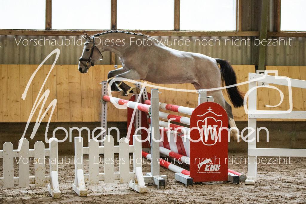 Freispringen-Pony-3j-12