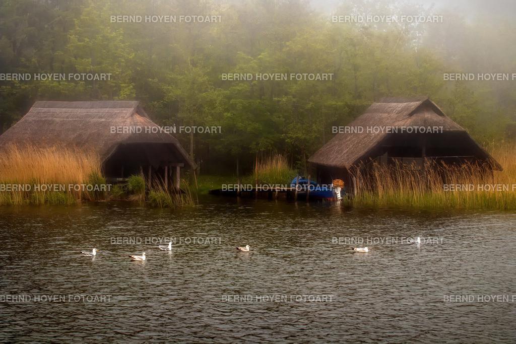 foggy day | Fotografie in Prerow (Fischland-Darss-Zingst), Deutschland / Digitale Bildbearbeitung / malerischer Effekt. | Photo in Prerow (Fischland-Darss-Zingst), Germany / Digital image editing / picturesque effect.