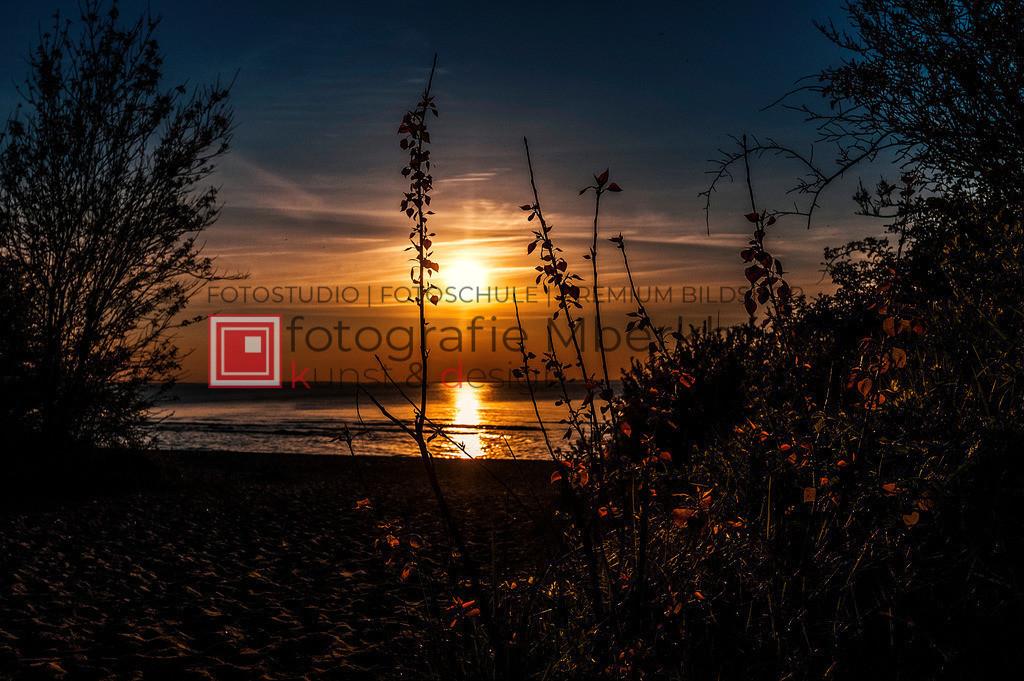 _Marko_Berkholz_mberkholz_MBE4078 | Die Bildergalerie Düne, Strand & Meer des Warnemünder Fotografen Marko Berkholz, zeigt Impressionen der abwechslungsreichen Dünenlandschaft an der Ostsee.