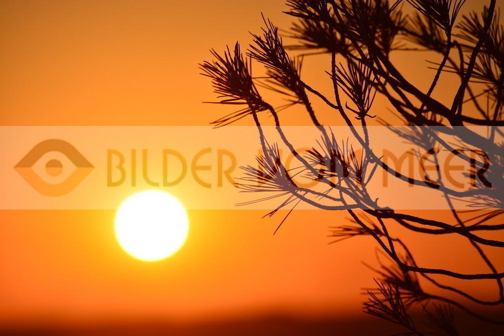 Bilder vom Meer   Bilder vom Meer Sonnenuntergang