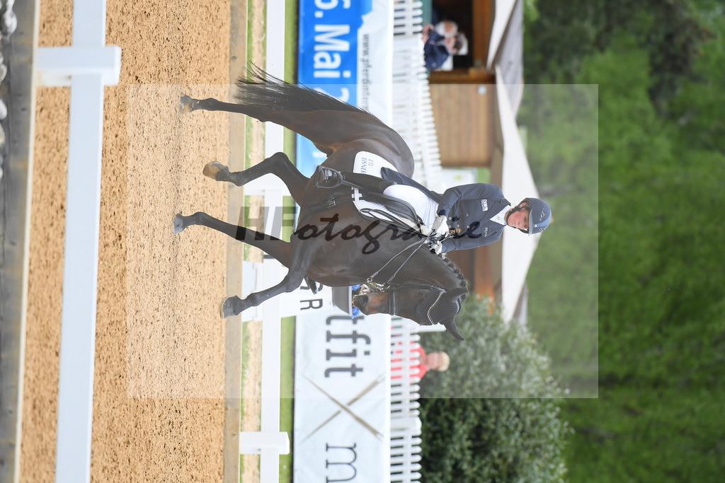 Langehanenberg_Straight Horse Ascenzione_10214085