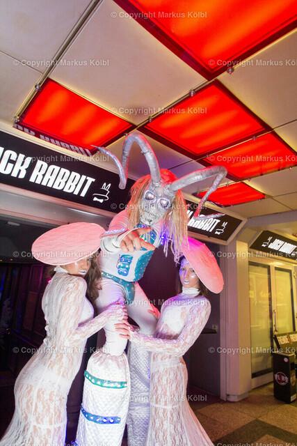Jack Rabbit 12122015-054