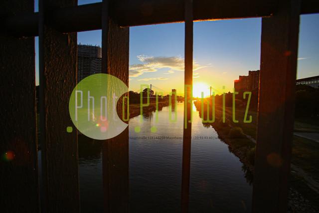 Sonnenuntergang am Neckar | Mannheim. 28JUL20 | Mannheim in der Abendsonne am Neckar. Sonnenuntergang. Mit Neckaruferbebauung und dem Collins Center (links)   BILD- ID 2108 | Bild: Photo-Proßwitz 27JUL20