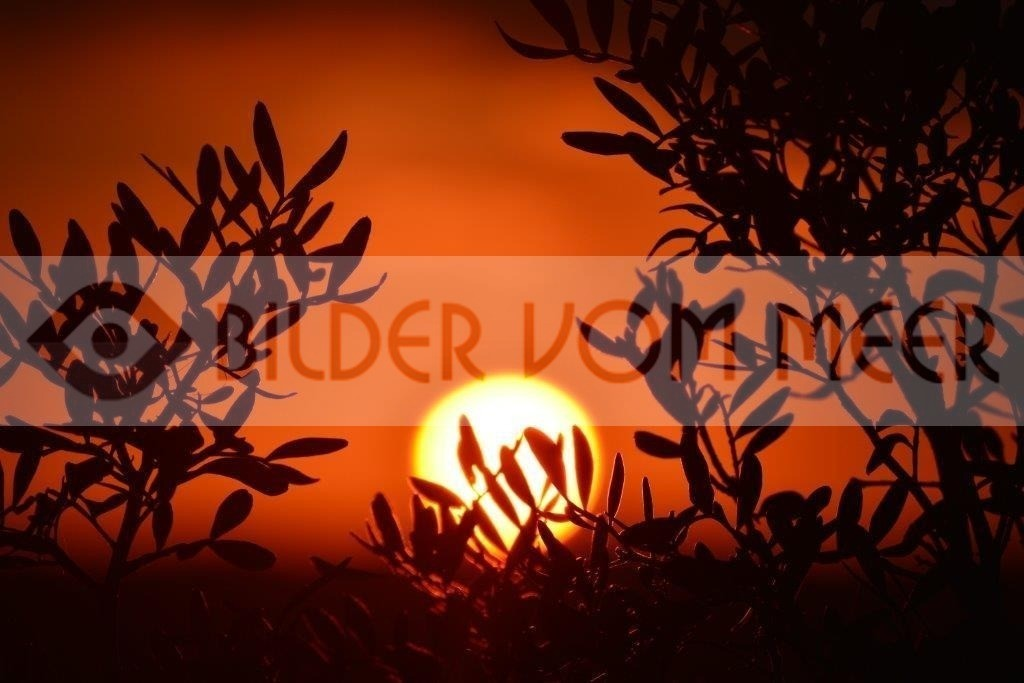 Bilder Sonnenuntergang Spanien | Sonnenuntergang am Meer