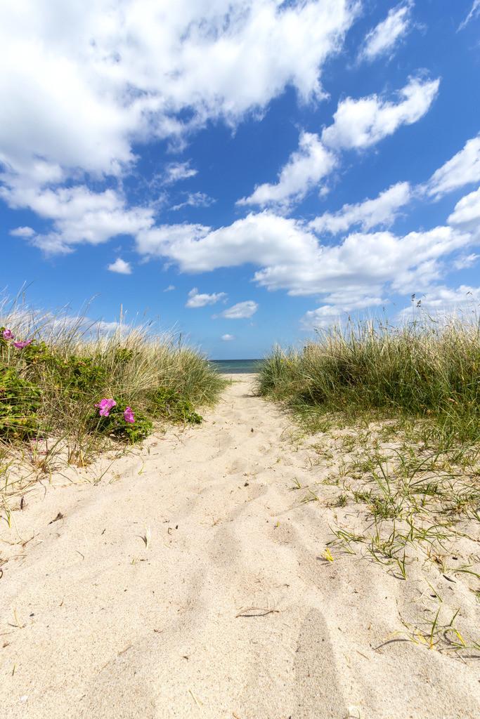 Strand in Weidefeld | Weg zum Strand