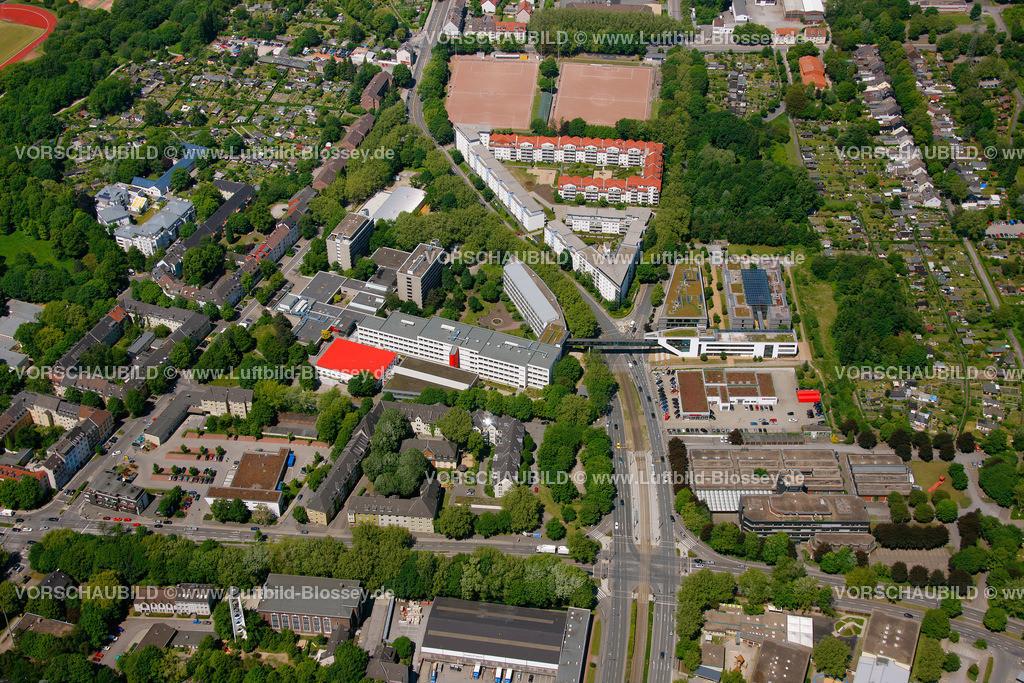 ES10058576 | Bildungspark Essen,  Essen, Ruhrgebiet, Nordrhein-Westfalen, Germany, Europa, Foto: hans@blossey.eu, 29.05.2010