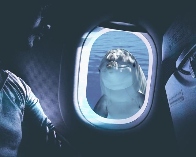 aeroplane underwater 3.0