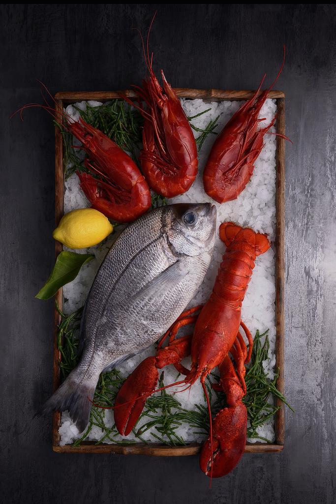Seafood | Foodfoto, Doraden, Langusten, Hummer auf Eis