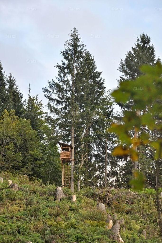 Hochsitz-Sept14_002_1