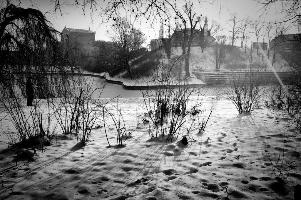 Dresden Zwingergarten   Aus der Serie