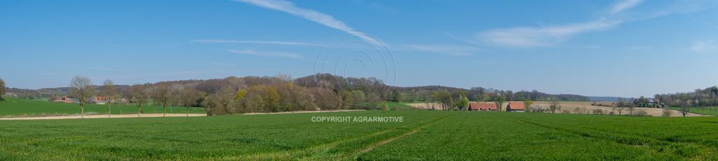 20190415-DSCF2432   junge Getreidefelder im Frühling