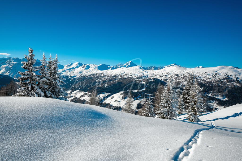 Spur im Schnee | Blick ins Obernberger Tal